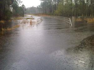 Flooded Flatwoods Trail